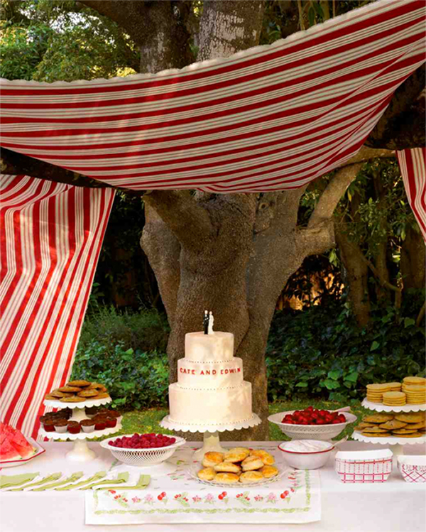 Inspiration for summer picnic wedding with red6