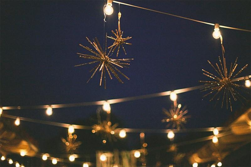 winterstarwedd10