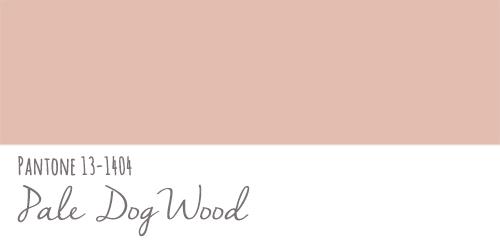ペールドッグウッドのカラー