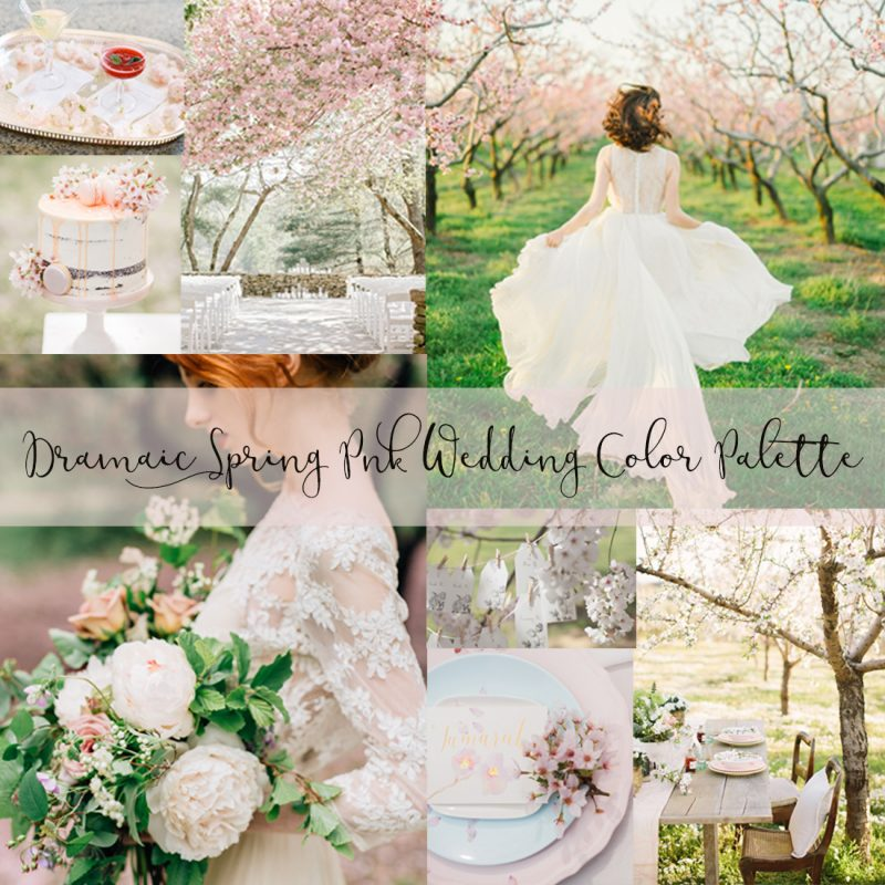 Dramaic Spring Pnk Wedding Color Palette